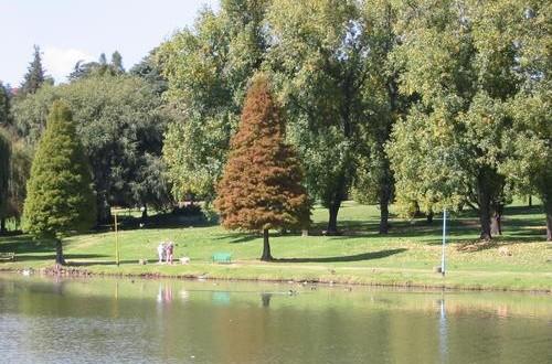 rodes-park-kensinton-johannesburg-500x330